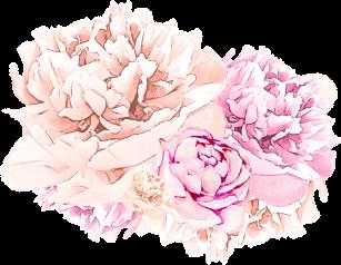 aqua-bath-flower1